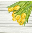 Yellow tulips with copy space EPS 10 vector image