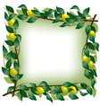 Lemon branch frame vector image