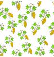 bitter melon seamless pattern vector image