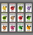 organic vegetables cards set farm eco vector image