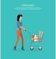 Woman with Cart Purchases Design vector image