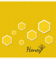 icon honeycomb vector image