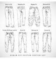 Denim Fit Hand Drawn Sketch Set vector image