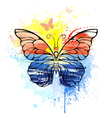 Butterfly with Painted Sea vector image