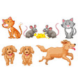 set of dogs and cats vector image