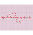 red heart beats cardiogram vector image