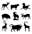 ungulates animals vector image vector image