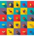 Fresh fruits set icons vector image
