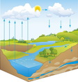 water cycle in nature vector image