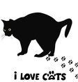 I love cats card vector image