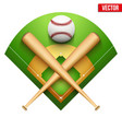 baseball leather ball and wooden bats vector image