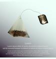 tea bag pyramid vector image
