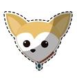 dog breed icon image vector image
