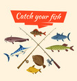 fish catch and fisher tackle and rods vector image vector image