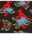 Seamless cardinal and holly vector image