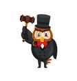 cute auction owl cartoon character vector image