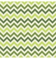 Green chevron pattern vector image