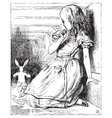 Alice White Rabbit vector image