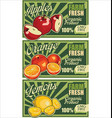 organic fruits concept design for gmo fre vector image