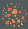 pumpkins set harvest autumn concept vegetables and vector image