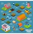 Organic food isometric flowchart vector image