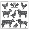 domestic animals silhouettes with vector image