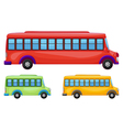 buses vector image vector image