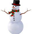 snowman isolate2 vector image