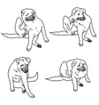 Drawing set of dog scratching itself from itching vector image