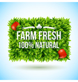 Farm fresh label made of leaves vector image