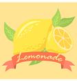 Lemonade Fruit Design Poster with Red Banner vector image