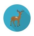 flat icon deer vector image