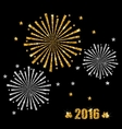 Abstract Festive Firework with Golden and Silver vector image