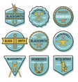 Blacksmith Emblem Set vector image