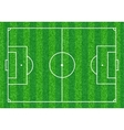 Green Soccer field vector image
