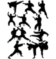 Karate silhouettes vector image