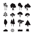Forest Elements Black vector image