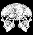 two faced skull vector image