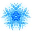 Snowflake vector image