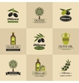 Olive logos labels and emblems vector image