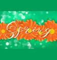 spring lettering design logo decorative vector image