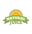 Natural orange juice logo label vector image