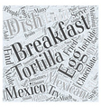 What Mexico Eats for Breakfast Word Cloud Concept vector image