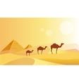 Camel Caravan And Pyramides vector image