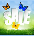 sale banner with grass border vector image