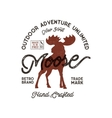 Outdoor adventure label Vintage typography with vector image