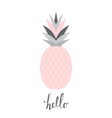 Pastel Pink Pineapple Design vector image