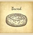 whole grain bread vector image