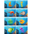 Scenes with sea animals under the sea vector image