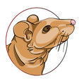 rat sign vector image